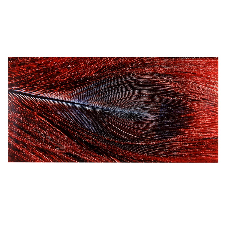 Red Feather Print